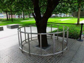 Memorial 11 de Setembro em Nova York - Árvore Sobrevivente