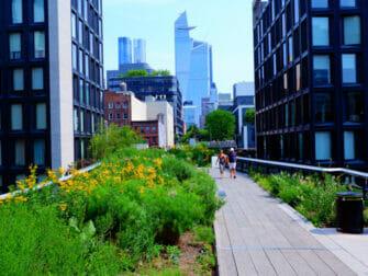 Parques em Nova York - Verão no High Line Park