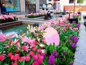 Páscoa em Nova York