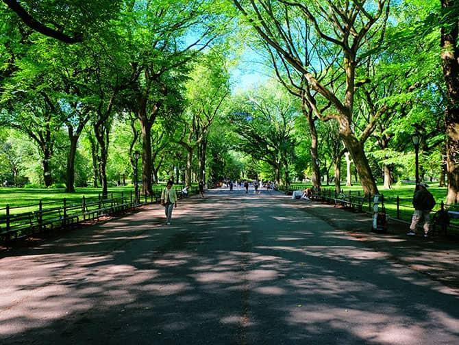 Labor Day en Nova York - Central Park