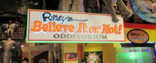 Ripley's Believe It or Not Nova York