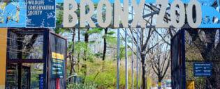 Bronx Zoo em Nova York