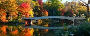 Excursão a pé pelas locações de filmes no Central Park - Bow Bridge
