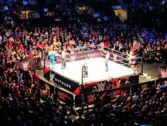 Ingressos para WWE Wrestling em Nova York - Luta