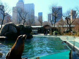 Ingressos para o Central Park Zoo