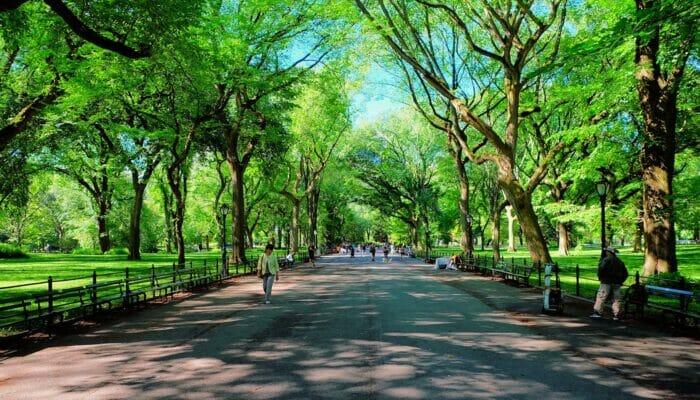 Dia das Mães em Nova York - The Mall no Central Park