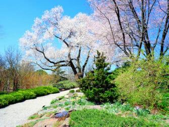 Jardins Botânicos em Nova York - New York Botanical Garden no Bronx